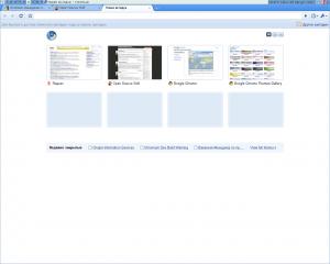 Общий вид браузера